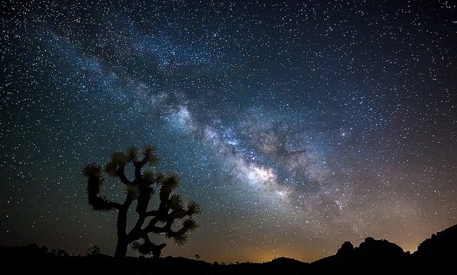 Joshua Tree National Park (Photo Ross Manges)